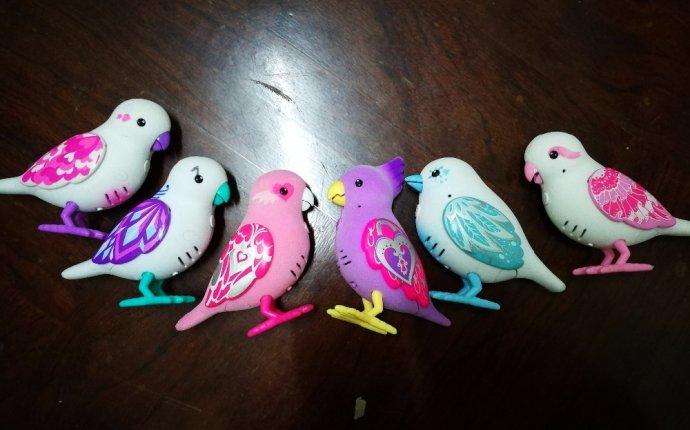 Дешёвые Жить Декоративных Птиц и схожие товары на AliExpress